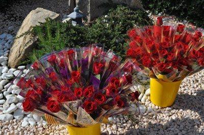Rosas Preparadas para San Jorge