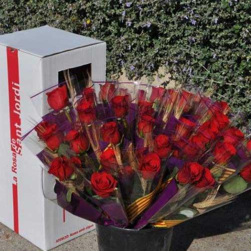 Comprar Rosas Rojas Preparadas para San Jorge